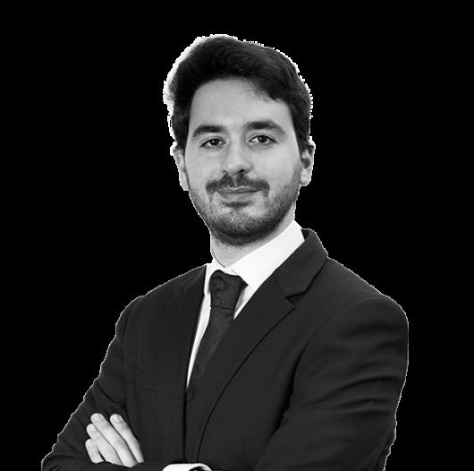 Tarek Bilani